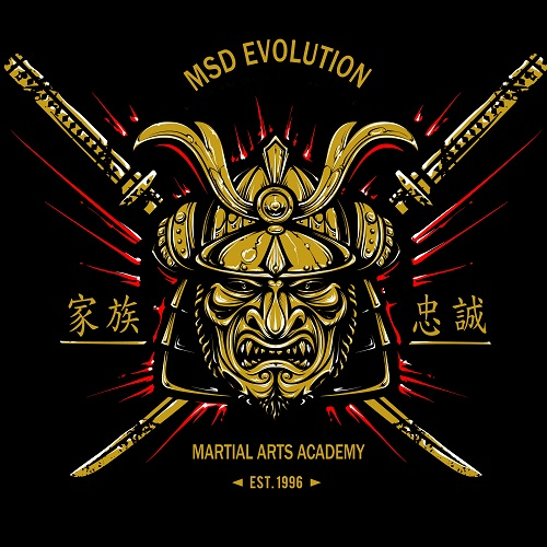 MSD Members Area - Online learning - Martial Arts Classes in Bishops Cleeve
